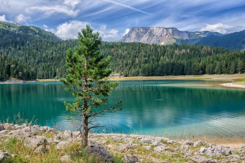 Schwarzer See in Montenegro lizenzfreie stockbilder