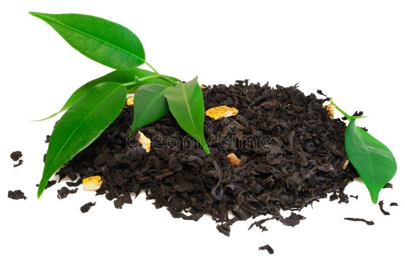 Schwarzer Tee mit grünem Blatt lizenzfreie stockfotos