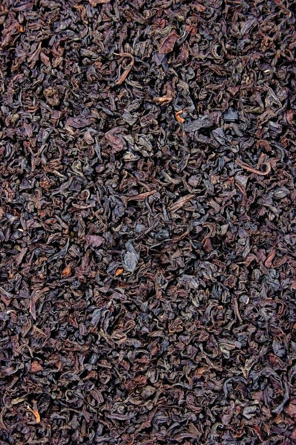 Schwarzer Teeblatt-Beschaffenheits-Nahaufnahme-Hintergrund, großes ausführliches strukturiertes vertikales Makronahaufnahme-Muste stockfotos