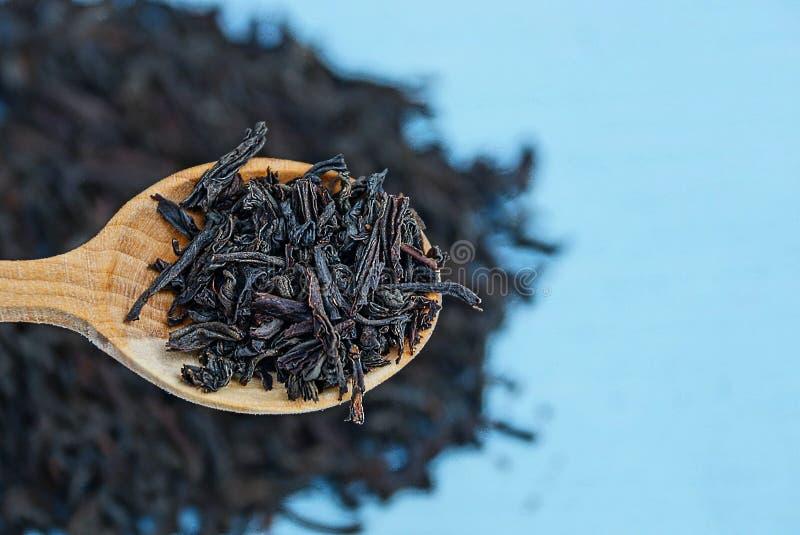 Schwarzer trockener Tee in einem hölzernen braunen Löffel stockbild