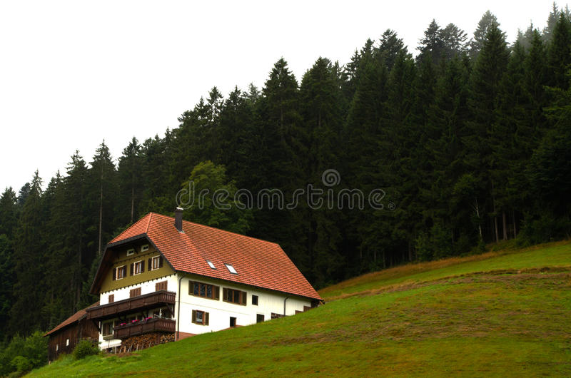 Schwarzer Wald Deutschland Schwarzwald stockfotografie