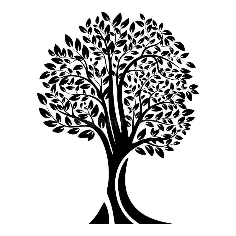 Schwarzes Baumschattenbild Getrennt auf weißem Hintergrund Vektor vektor abbildung