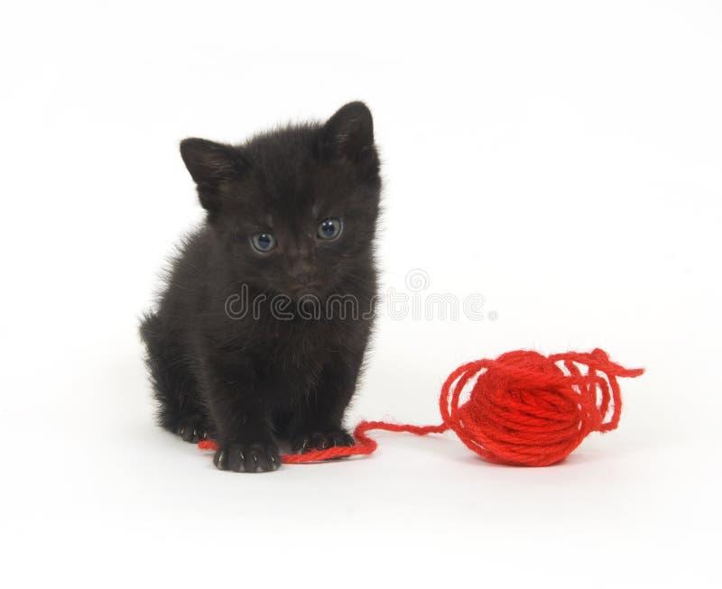 Schwarzes Kätzchen und rotes Garn lizenzfreies stockfoto