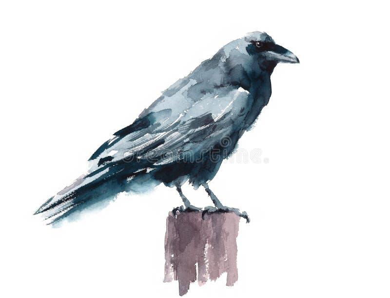 Schwarzes Krähen-Aquarell Raven Bird Standing auf der Stumpf handgemalten Illustration lokalisiert auf weißem Hintergrund stock abbildung