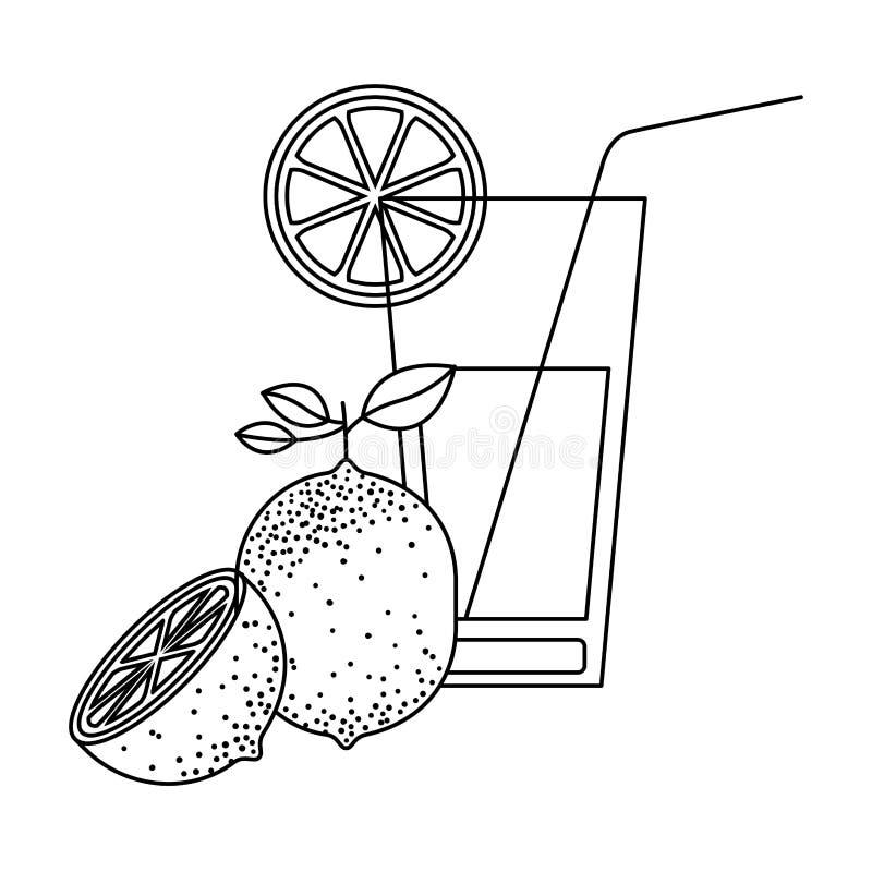 Schwarzes Schattenbild des Cocktailglases mit Zitronenscheibe und Zitronenfrucht lizenzfreie abbildung