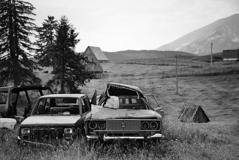 Schwarzes u Zwei defekte Autos stehen auf einer Wiese stockbild
