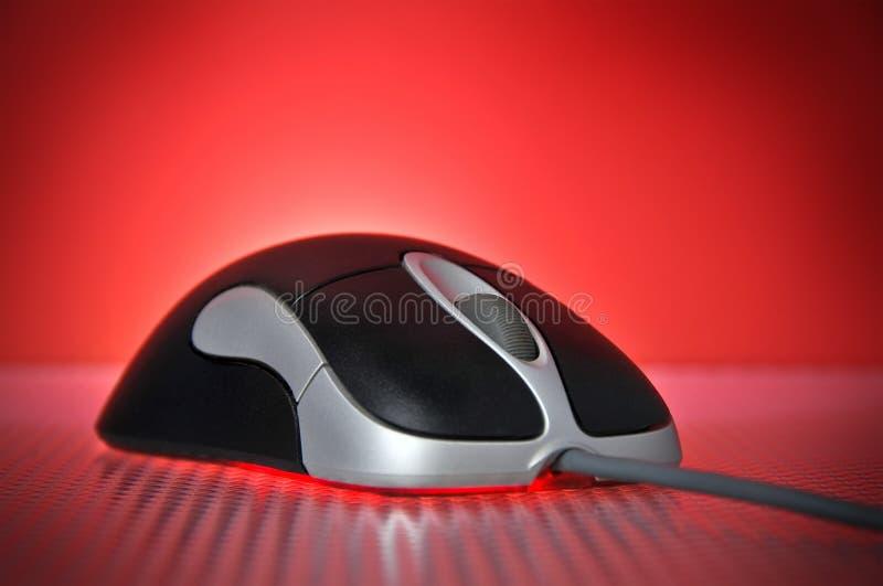 Schwarzes und Silber verdrahtete optische Computer-Maus lizenzfreies stockbild