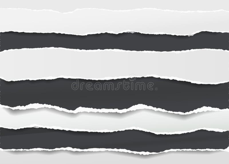 Schwarzes, Weiß zerriss leere horizontale Briefpapierstreifen für den Text oder Mitteilung, die auf dunklem Hintergrund fest sind vektor abbildung