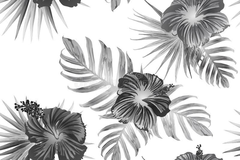 Schwarzes weißes exotisches Muster lizenzfreie abbildung