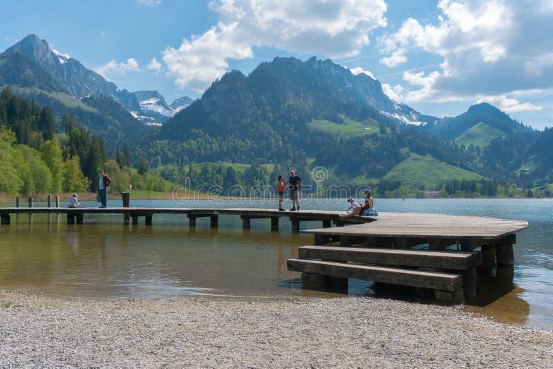 Schwarzsee, franco/Suiza - 1 de junio de 2019: la gente turística disfruta de una visita al lago Schwarzsee en Fribourg como vaca fotos de archivo libres de regalías