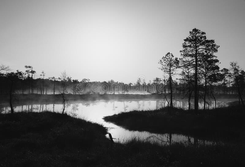 Schwarzweißaufnahme von einem See lizenzfreie stockbilder