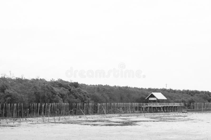 Schwarzweiss-Bauholz zwischen Mangroven und dem Häuschen lizenzfreies stockbild