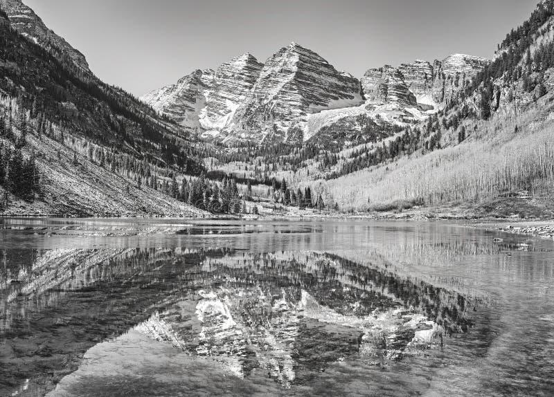 Schwarzweiss-Bild von kastanienbraunen Bell reflektierte sich im See stockfotografie
