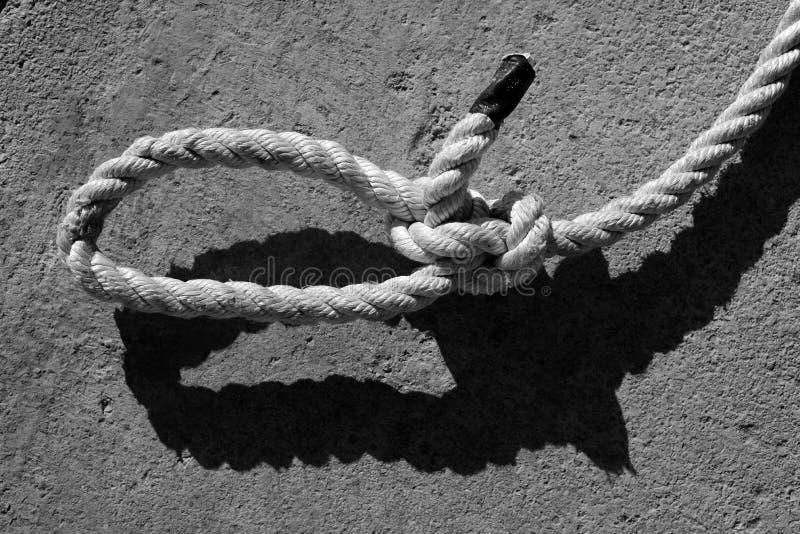 Schwarzweiss-Bowlinegaze auf Marineseil stockbild