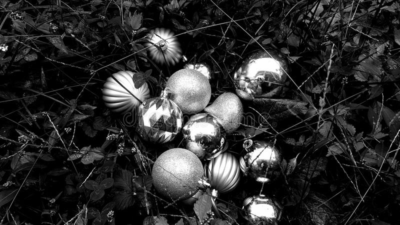 Schwarzweiss-Feiertag lizenzfreie stockbilder