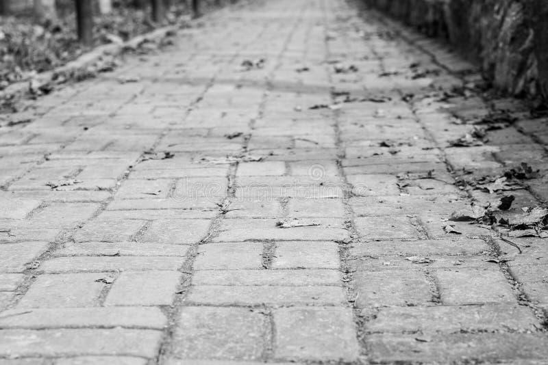 Schwarzweiss-Foto der Straße mit dem Pflasterstein, der in den Abstand verlässt stockbild