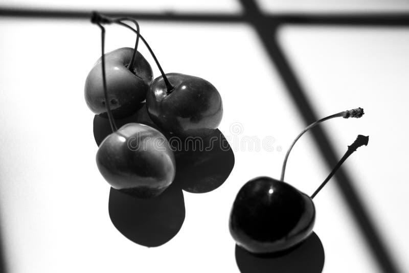 Schwarzweiss-Kirschfrucht lizenzfreie stockfotos