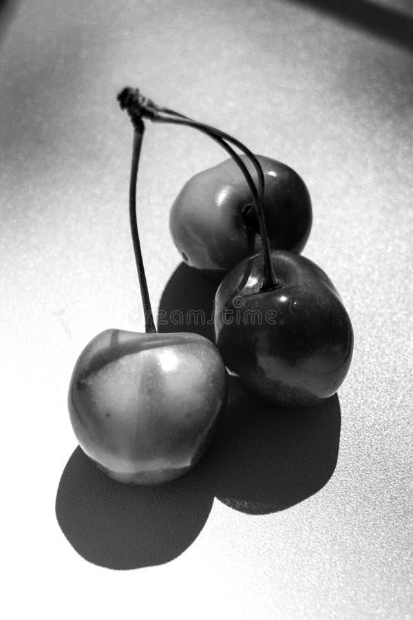 Schwarzweiss-Kirschfrucht stockbilder