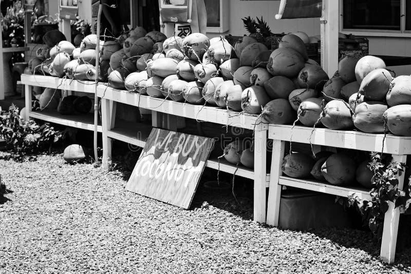 Schwarzweiss-Kokosnuss-Stand stockfotos