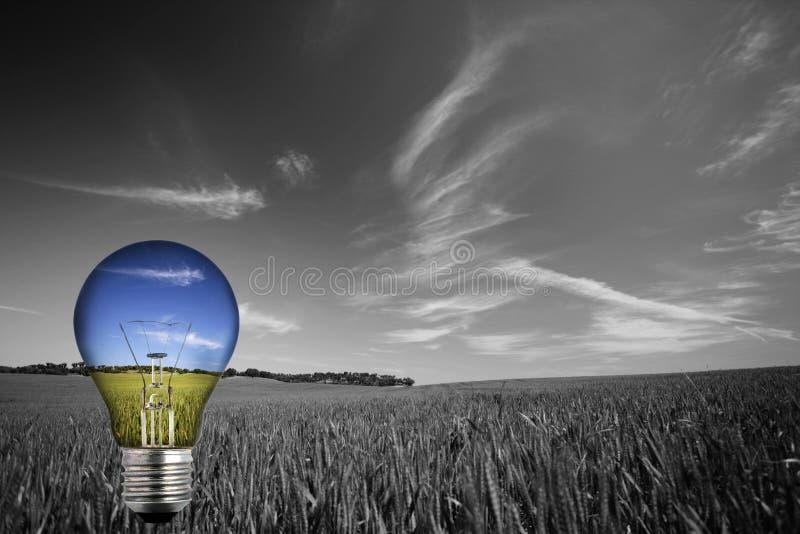 Schwarzweiss-landcape mit bunter Glühlampe lizenzfreie stockfotografie