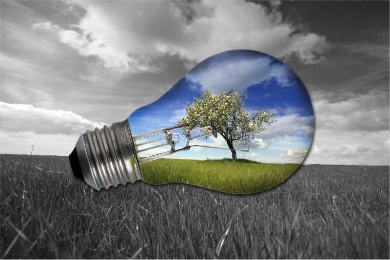 Schwarzweiss-landcape mit bunter Glühlampe lizenzfreie stockbilder