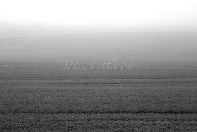 Schwarzweiss-Landwirtschaftsfeld im Nebel stockbild