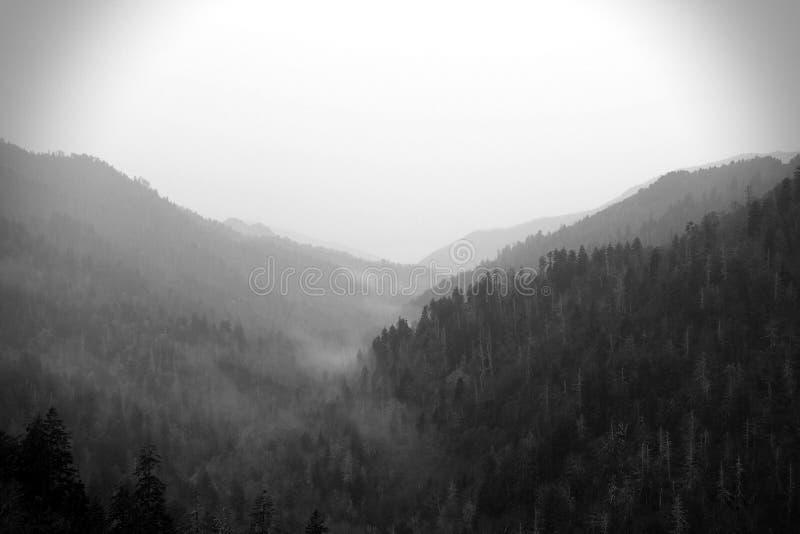 Schwarzweiss-Naturfotografie Smokey Mountainss in Tennessee stockbild