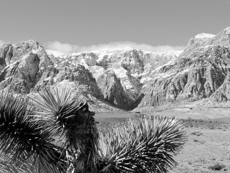 Schwarzweiss-- Panorama-Gebirgszug im roten Felsen-Naturschutzgebiet, Süd-Nevada, USA lizenzfreies stockfoto