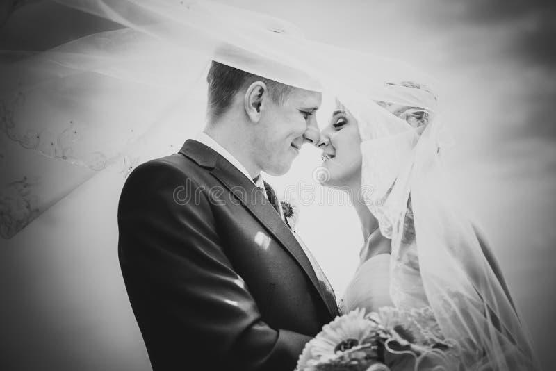 Schwarzweiss-Porträt eben des verheirateten Paars Wind, der herauf langen Schleier anhebt stockfotos