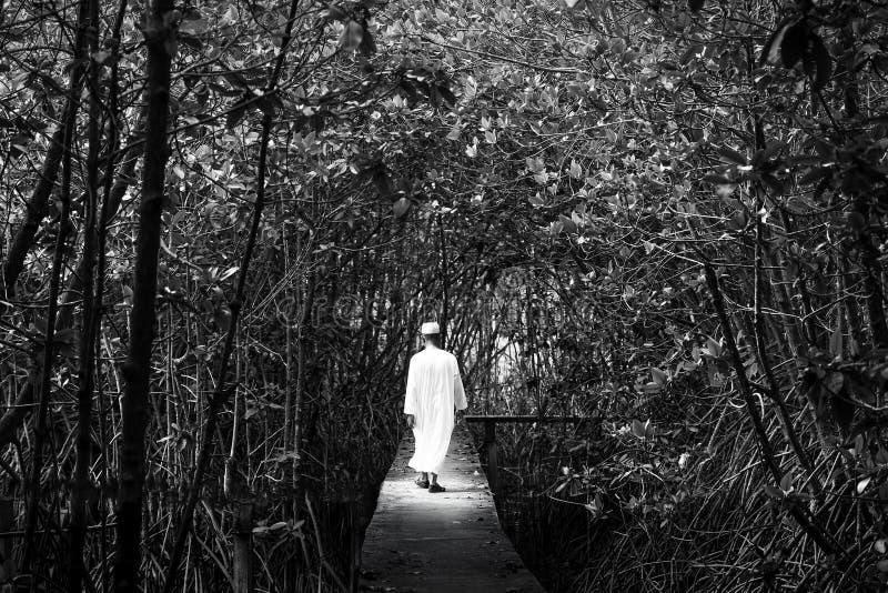 Schwarzweiss-Porträt von den männlichen Moslems in der traditionellen Kleidung gehend in eine Mangrovenwaldphantasie des Lichte stockbilder