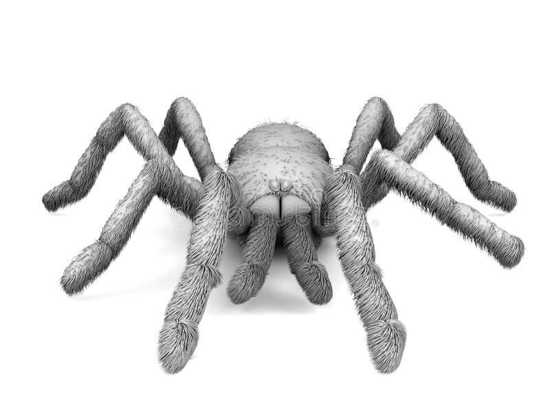 Schwarzweiss-Spinne auf einem weißen Hintergrund 3d stock abbildung