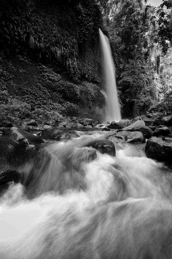 Schwarzweiss--Wasserfall Sendeng Gile in Lombok, Indonesien lizenzfreie stockbilder