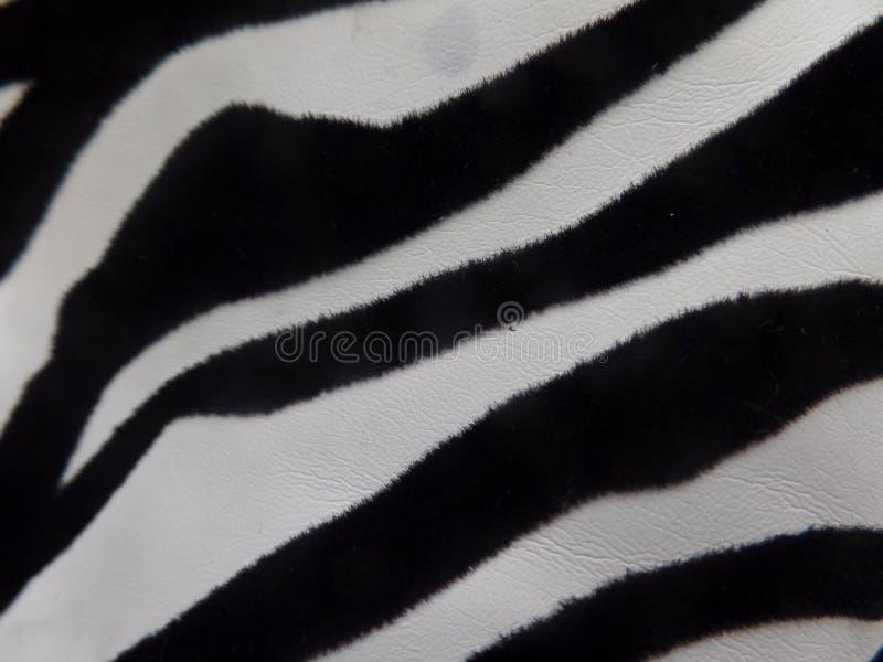 Schwarzweiss-Zebradruckgewebe stockfotografie