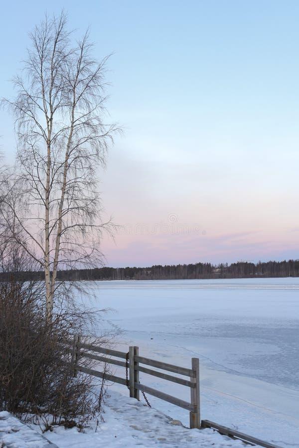 Schweden, LuleÃ¥-Wintermorgen, Ansicht über Luleälven lizenzfreies stockbild