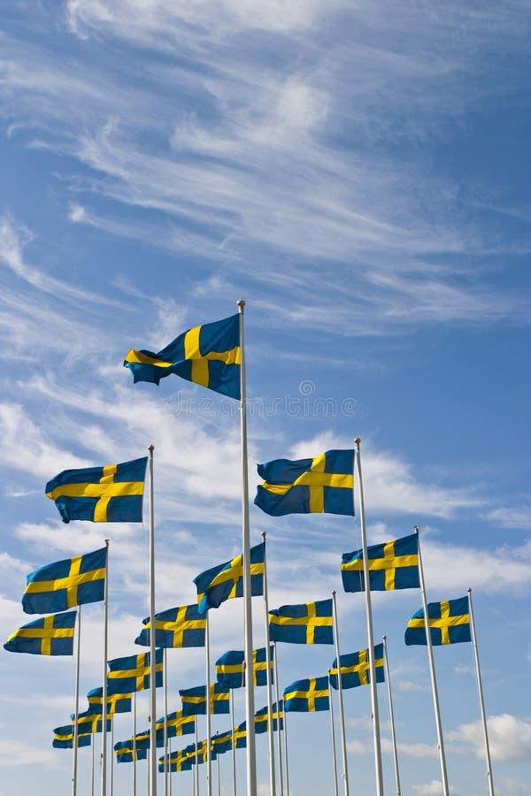 Schwedische Flagge lizenzfreie stockfotos