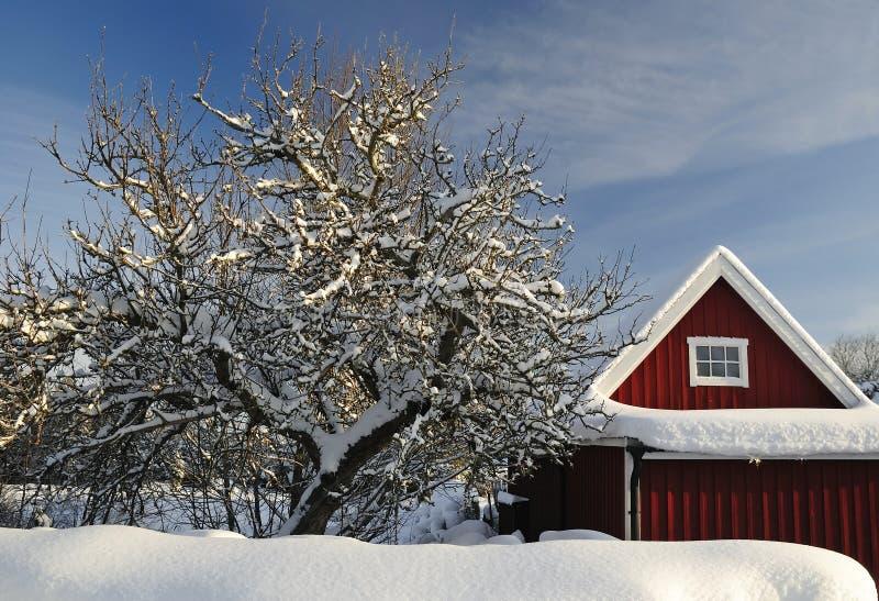 Schwedische Gartendetails im Winter lizenzfreie stockbilder