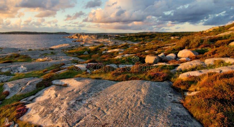 Schwedische Küstenlinie im Herbst stockbild