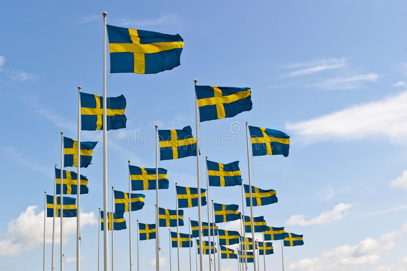 Schwedische Markierungsfahne stockfotografie