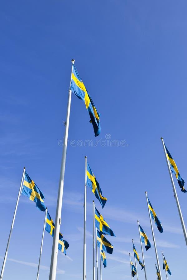 Schwedische Markierungsfahnen stockbild