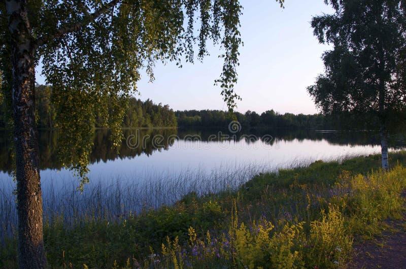 Schwedischer See in Småland stockfotos