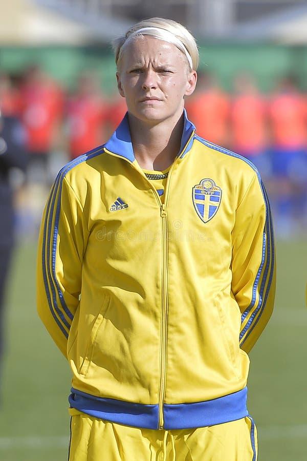 schweden fußballspieler