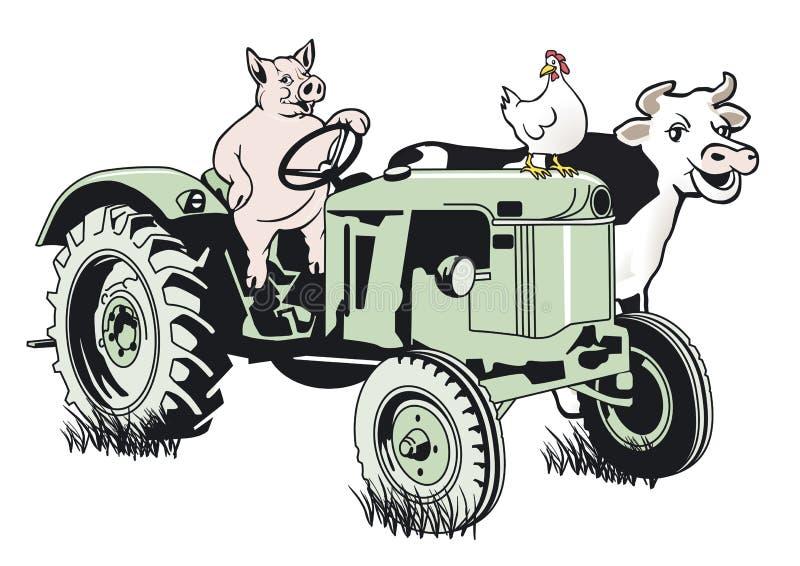 Schwein auf dem Traktor stock abbildung