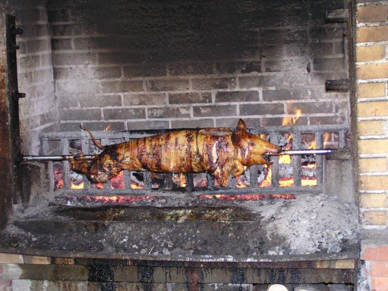 Schwein auf einem Spucken stockbild