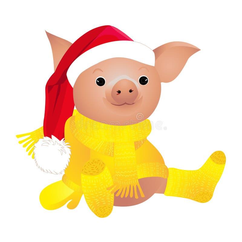 Schwein in der Strickjacke 2019 Chinesisches Neujahrsfest des Schweins Weihnachtsmann auf einem Schlitten Getrennt auf einem weiß lizenzfreie abbildung