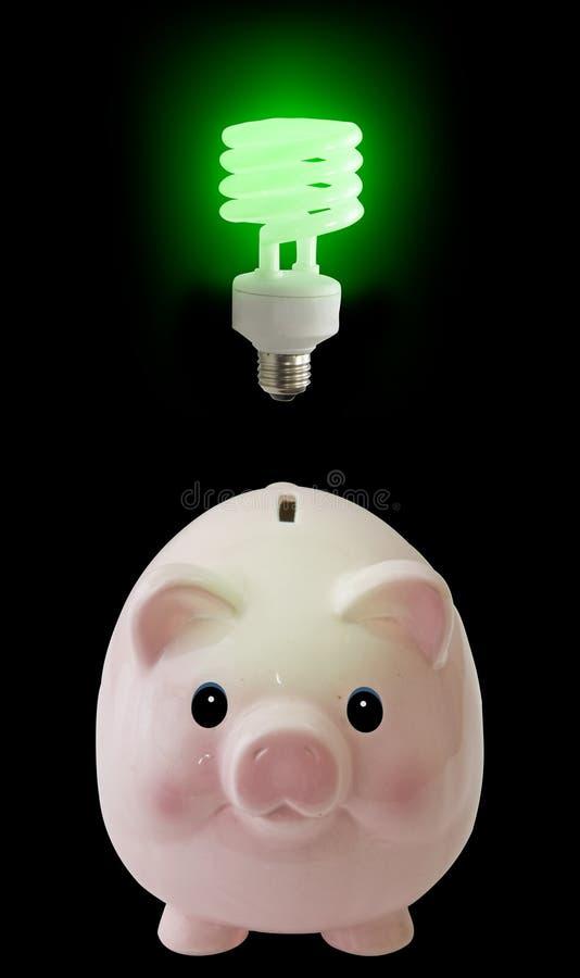Schwein erhält Idee lizenzfreies stockfoto