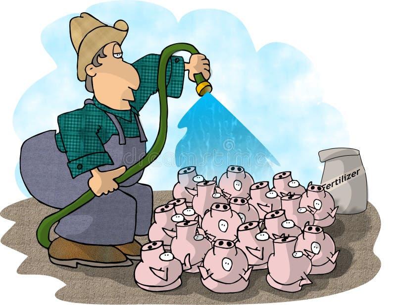 Schwein-Landwirt Stockfoto