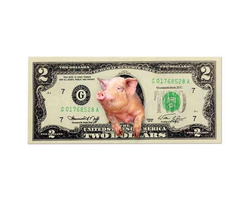 Schwein schaut aus zwei Dollar heraus stattdessen den amerikanischen lokalisierten Präsidenten stockbild