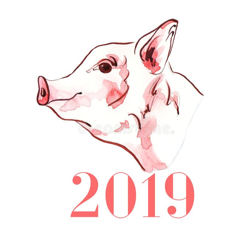 Schweinaquarellillustration von handgemaltem Symbol neuen Jahres 2019 stock abbildung