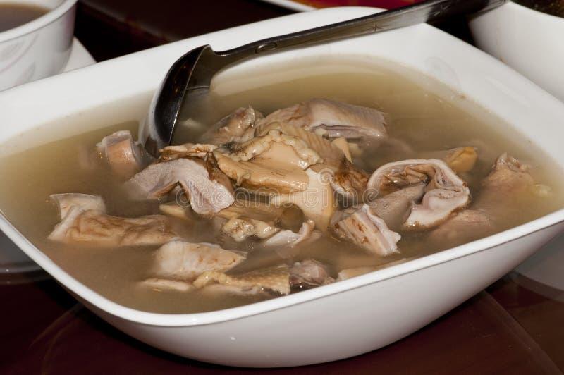 Schweinefleisch-Bauch-Suppe lizenzfreie stockbilder