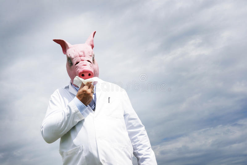 Schweingrippe lizenzfreies stockbild